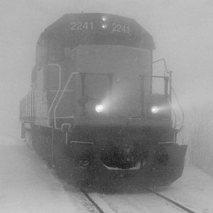 LLPX 2241 In The Fog