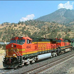 BNSF 4643 on the loop