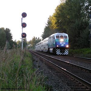 Sounder On West Coast Express