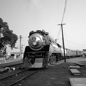 The 4449 in B&W