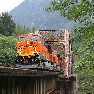 Z Train Crossing The Skykomish River