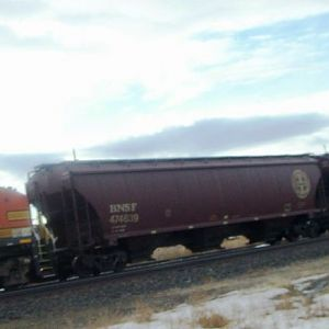 Grain cars at the siding