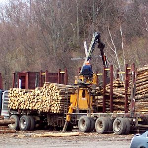 Logging operation?