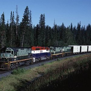 Mackenzie Switcher