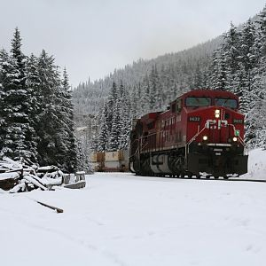 Eastbound Intermodal at Yoho
