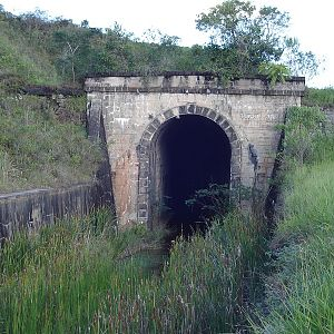 Tunnel 36