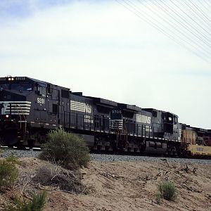 NS on UP at Winterhaven, CA