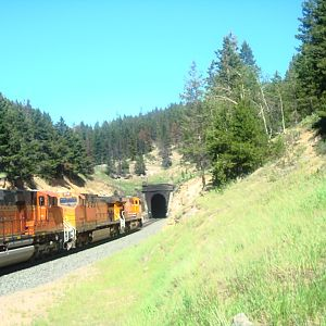 BNSF coal empties at Blossberg (3)