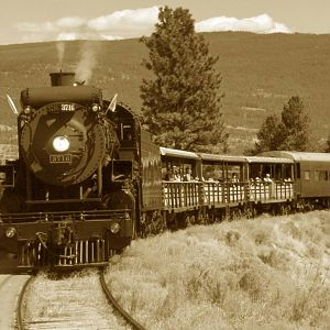 3716 comin' off the Trout Creek
