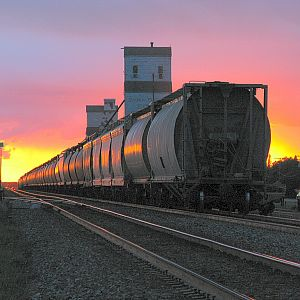 Sun Set Hopper Cars