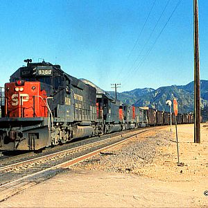 SP #8306 at West Canyon