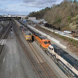 Coal trains in Seattle