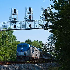 Southbound Amtrak Northeast Regional at Milford, VA