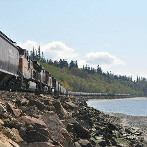 Grain train at low tide