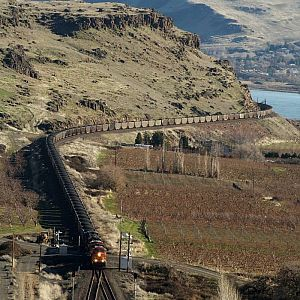 Loaded coal at Maryhill