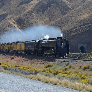 UP 844 In Nevada