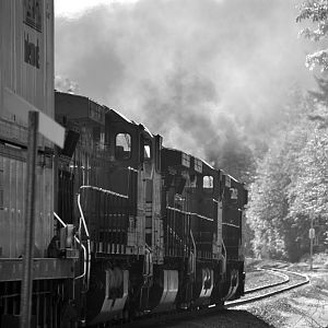 Eastbound leaves Skykomish