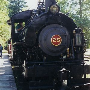 Cowichan Valley Railway No.25