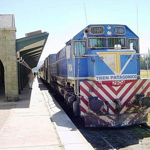 Another View of the Tren Patagonico